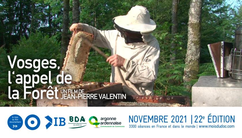 Bannière mois du doc Vosges, l'Appel de la forêt